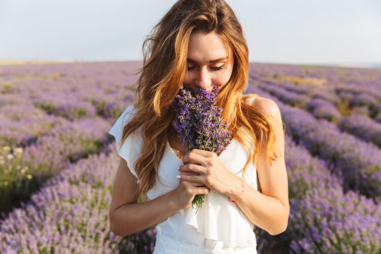 ラベンダー畑でラベンダーの花束を持つ美女