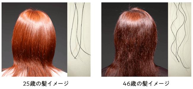 「大人のうねり始めた髪」(2005年花王調べ)
