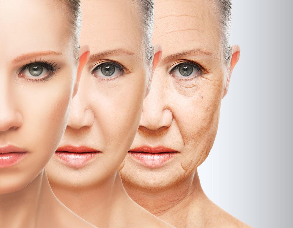 老化への肌変化