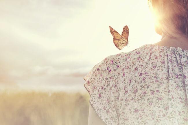 女性の方に珍しい蝶々