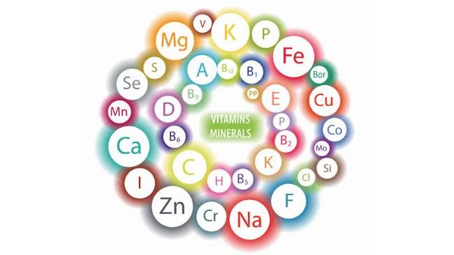 ミネラル・ビタミンの成分画像