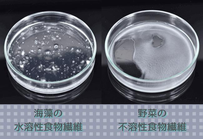 海藻や大麦などに含まれ水に溶ける「水溶性食物繊維」と、野菜に含まれる水に溶けない「不溶性食物繊維」